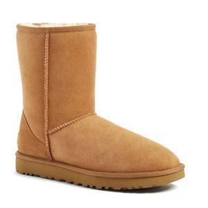 Chestnut Short Ugg boots